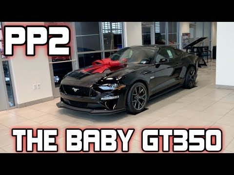 BABY GT?-  Mustang GT Performance Package Level  Walkaround (PP)