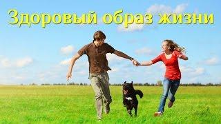 """Биоэнергетика. """"Здоровый образ жизни"""". Открытый урок Марины Каганович и Сергея Ратнера"""