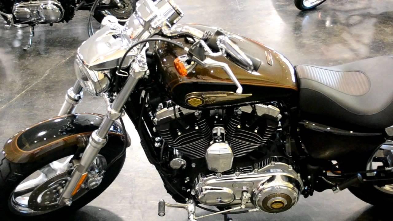 Harley-davidson 1200 custom 110th anniversary image #8.