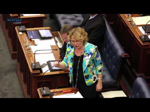 Helen Zille onsteld oor ''She wanted to kill us''-aanmerking in parlement