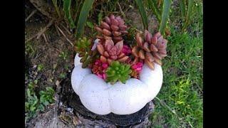Cómo hacer maceta de cemento en forma de calabaza / HOW TO MAKE CEMENT PUMPKIN FLOWER POT