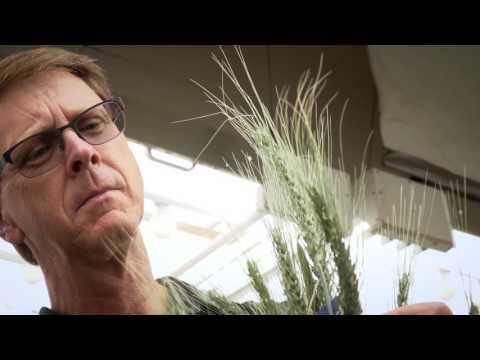 2016 ASTech Award Winner Agriculture: Dr. Robert Graf