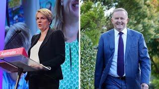 Tanya Plibersek to launch Labor leadership bid
