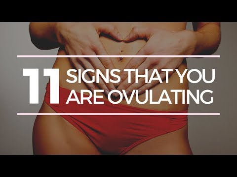 11 SIGNS THAT YOU ARE OVULATING