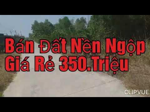 Bán Đất Lô Nền Ngộp Giá Rẻ 350.Triệu tại huyện tân thạnh tỉnh long an