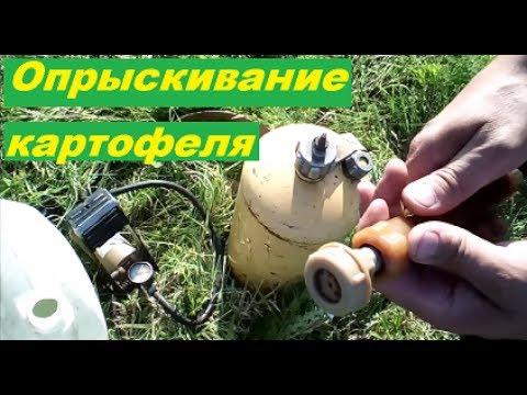 Опрыскивание картофеля от колорадского жука. Своими руками. Жизнь в деревне.