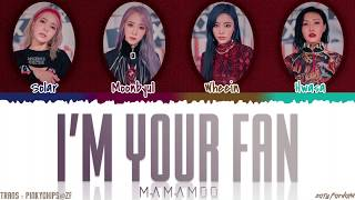 Download lagu MAMAMOO (마마무) - 'I'M YOUR FAN' Lyrics [Color Coded_Han_Rom_Eng]