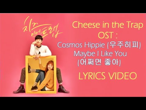 Cheese in the Trap OST : Cosmos Hippie –  Maybe I Like You { Lyrics Han, Rom, Eng}