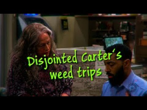 Download Disjointed Carter´s weed trips   HD Netflix 2017