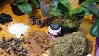 Субстрат для орхидей. Заготовка и приготовление.