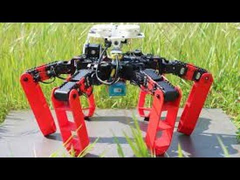 -أنتبوت- روبوت مستوحى من نمل الصحراء...قادر على التحرك من دون نظام التموقع الجغرافي  - نشر قبل 24 ساعة