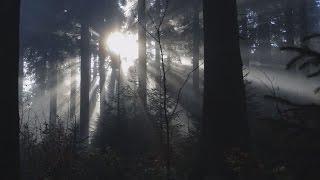 Bayerischer Wald - Urlaub in der Dreisesselgemeinde Neureichenau / Imagefilm