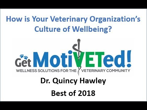 Get MotiVETed 2018 Veterinary Wellbeing Highlights - Best of Dr. Hawley