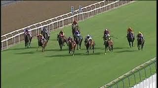 Vidéo de la course PMU MR 90 HANDICAP