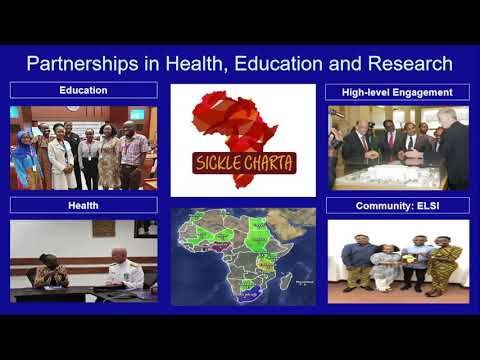 Sickle Cell Disease in Africa: Health, Genomics and Gene Therapy