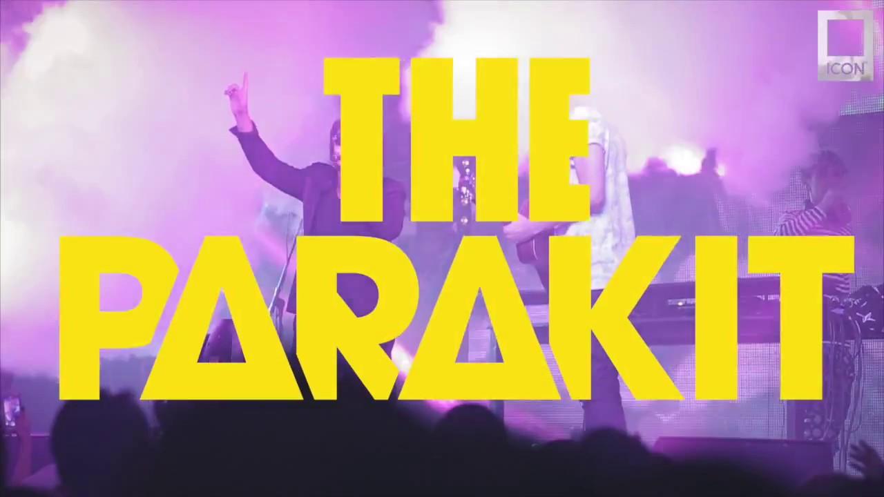 Видеоотчет - THE PARAKIT