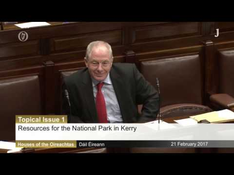 Michael Healy-Rae calls for the army to battle the rhododendrons in Killarney National Park