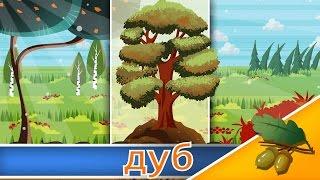 Загадки про дерева
