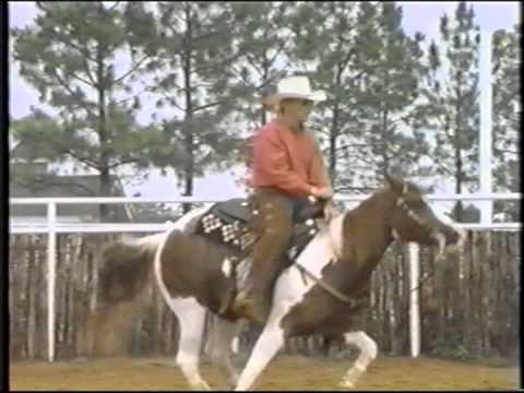 AMERICAN PAINT HORSE - INSTITUCIONAL VIDEO OF APHA.