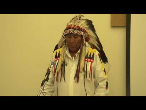 Chief Arvol Looking Horse: Prophecies, World Peace, And Global Healing
