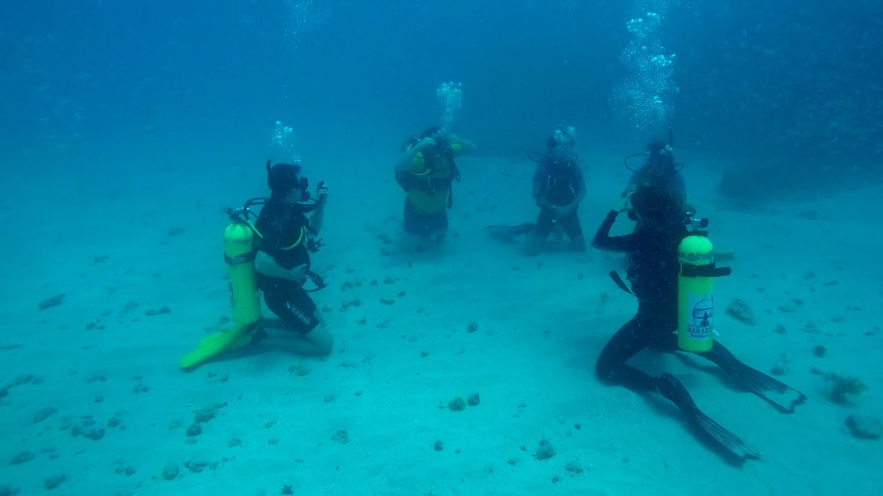 Check Out Open Water Dive Padi Youtube