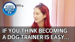 If you think becoming a dog trainer is easy… [Dogs are incredible/ENG/2019.11.27]
