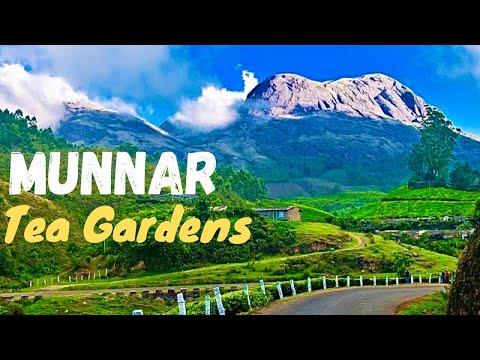 Amazing Munnar Drive Teagarden Landscape kerala India *HD ...