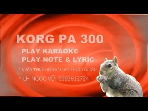 KORG PA 300 PLAY KARAOKE  001