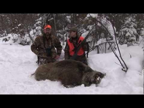 Episode 1 Russian Boar Hunt