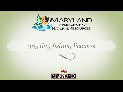 Maryland Fisheries Service - 365 Day Licenses