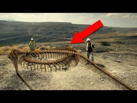 7 MYTHICAL Creatures that Actually EXISTED