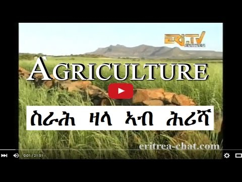 Eritrean Farmer Benefits from Srah Sala - Agriculture - Eritrea TV