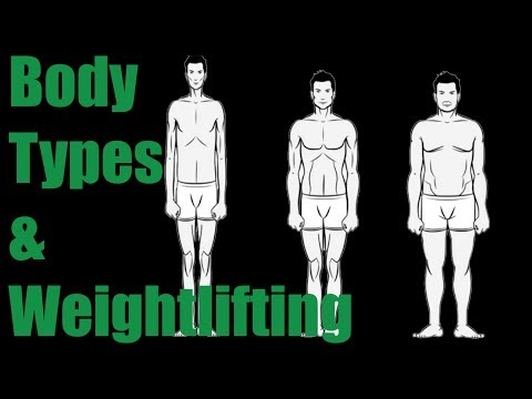 How Different Body Types Affect the Lifts