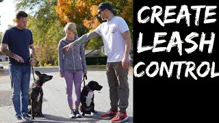 How to teach any dog to stop pulling and walk nicely on a loose leash!