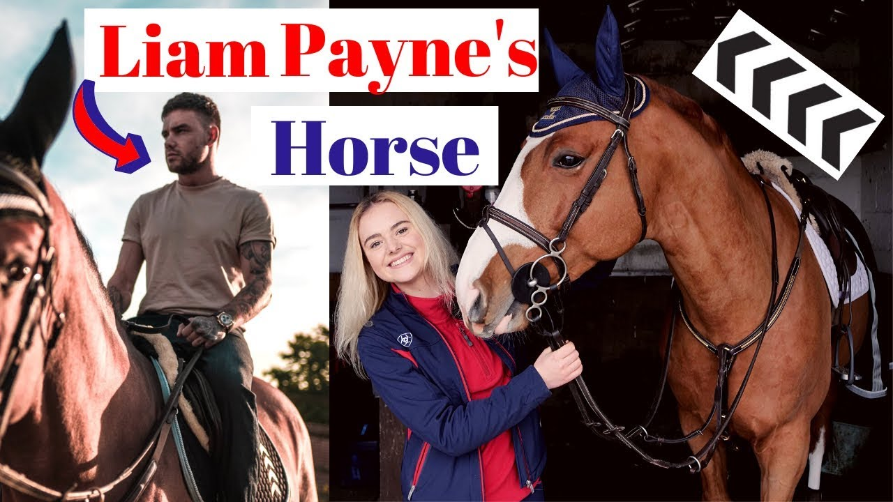 Liam Paynes New Horse featuring Yazmin Pinchen | This Esme