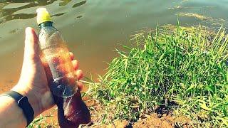 Ликвид Робин Ред своими руками Реакция рыбы Подводная съемка