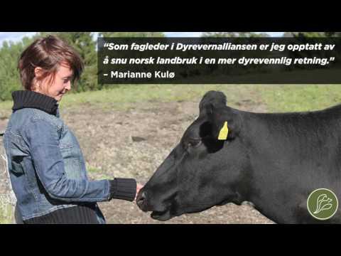 Ekko - NRK Radio - 21.09.16