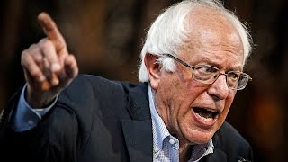 Establishment Democrats Refuse To Stop The Bernie Bashing