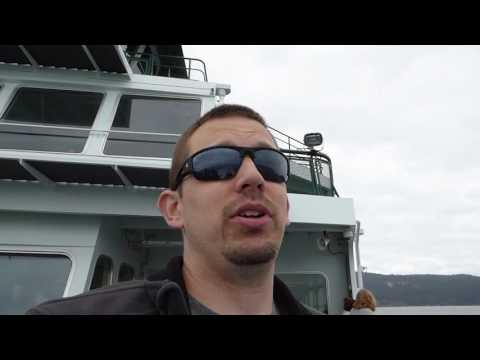 Our trip to San Juan Island, did we see whales?