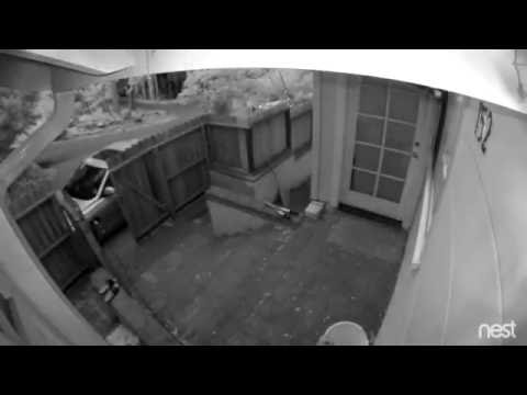 Timelapse from Nest Cam Outdoor showing daytime and night vision