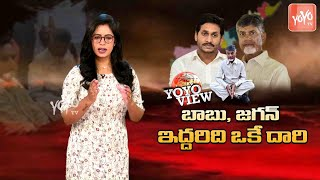 AP CM YS Jagan And Chandrababu Naidu In Same Route | YOYO VIEW | TDP VS YCP