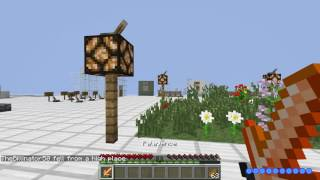 Minecraft Mod: Divine RPG Part 1