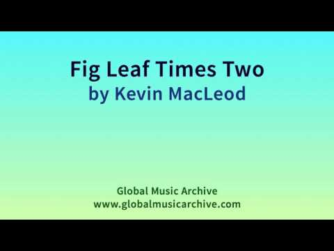 Fig Leaf Times Two by Kevin MacLeod 1 HOUR