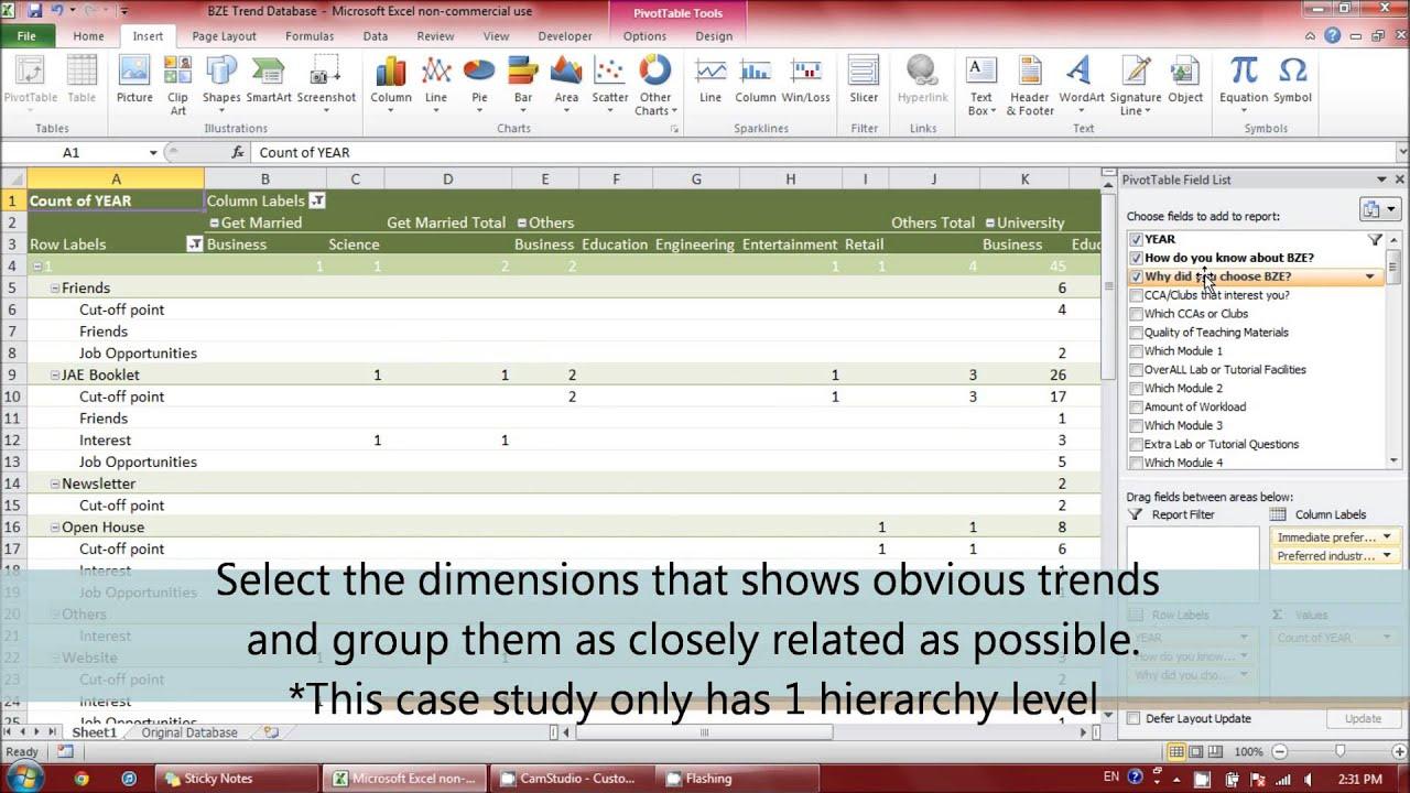 excel case study