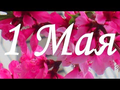 1 Мая С праздником  Поздравление друзей🌺 🌸