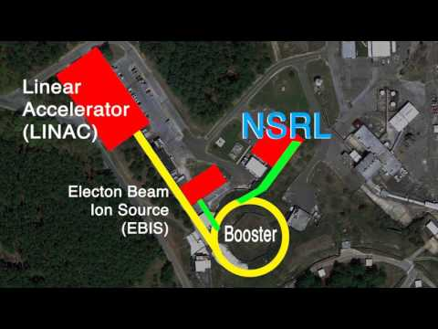 How NASA uses BNL Heavy Ion Accelerator Facility to Study Space Radiation