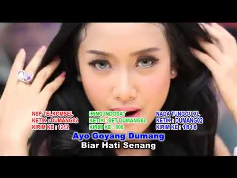 GOYANG DUMANG   CITA CITATA OFFICIAL MUSIC VIDEO   MP3 Download STAFA Band1