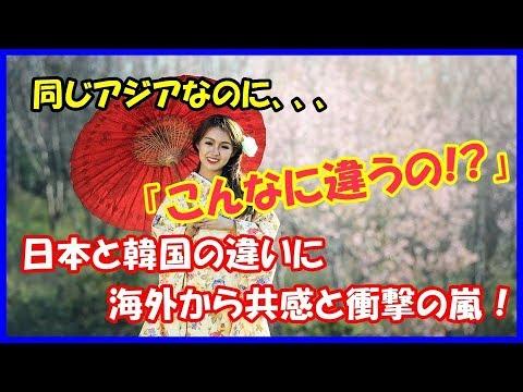 「日本と韓国の違い」を白人女性が投稿した内容に、海外から共感と衝撃の嵐!【海外の反応】