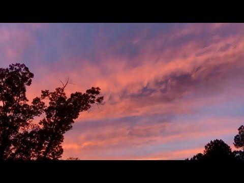 Art College Vlog 11 | Let's change the world.