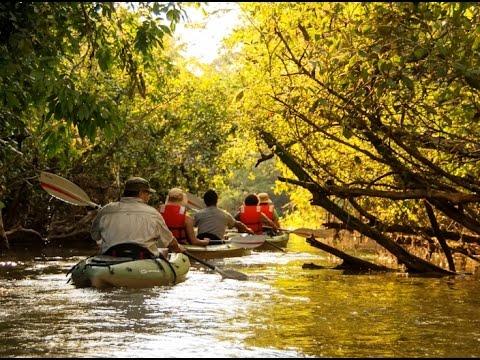 Ecuador's Amazon Region